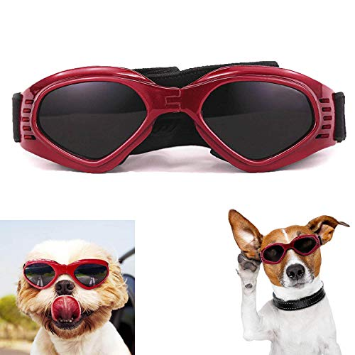 Gafas de Sol para Perros 1